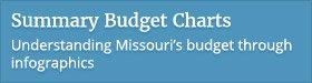 Summary Budget Charts